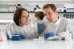 Two scientists work together and examine data in a lab.